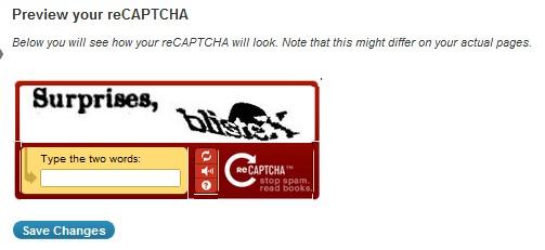 ReCaptcha Preview