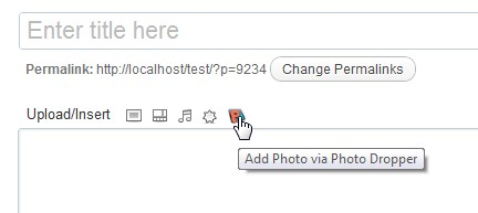 Add Photo In WordPress Editor